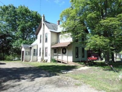 3695 Route 39, Collins, NY 14034