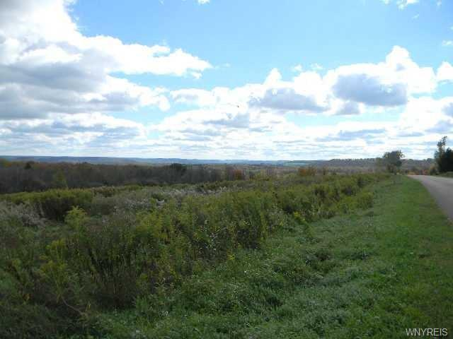 Lot 3 Eastland Road, Yorkshire, NY 14042