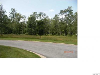 Photo of 10105 Shamus Lane, Clarence, NY 14031