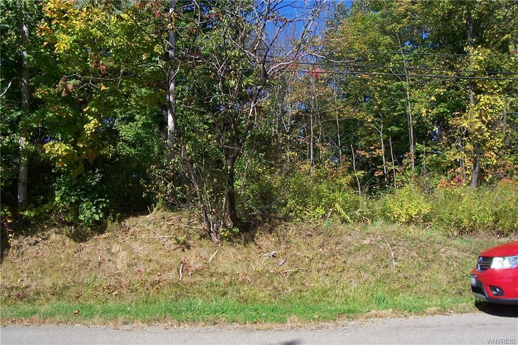 00 West Becker Road, Collins, NY 14034