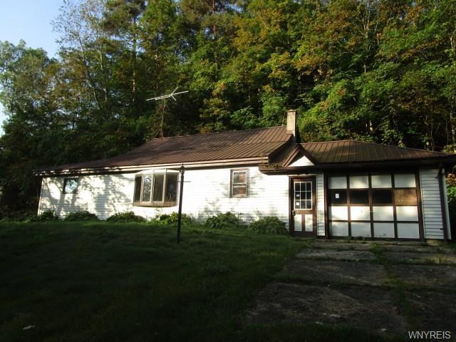 9646 East Otto Road, East Otto, NY 14171