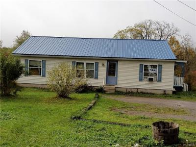 5725 State Route 39, Pike, NY 14427