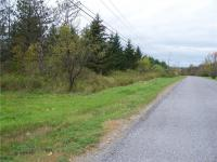 3 acres Center Street, Colden, NY 14033