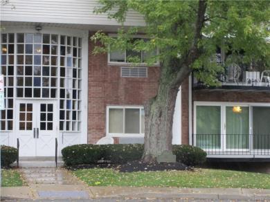 28 Park Lane Court, Amherst, NY 14221