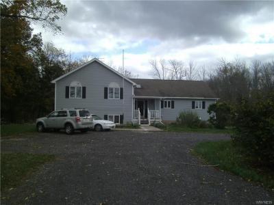 Photo of 4005 Hartland Road, Royalton, NY 14067