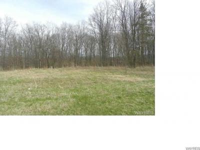 Photo of Griswold Road, Darien, NY 14040