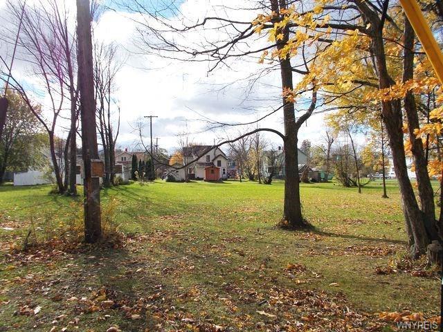 Dellwood Avenue, Evans, NY 14006