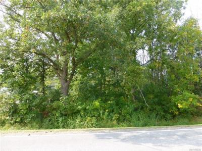 Photo of V/L Porter Center Road, Lewiston, NY 14092
