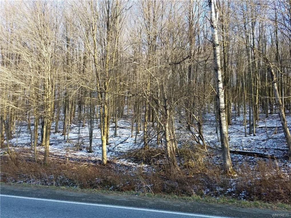 Dutch Hill Road, Napoli, NY 14755