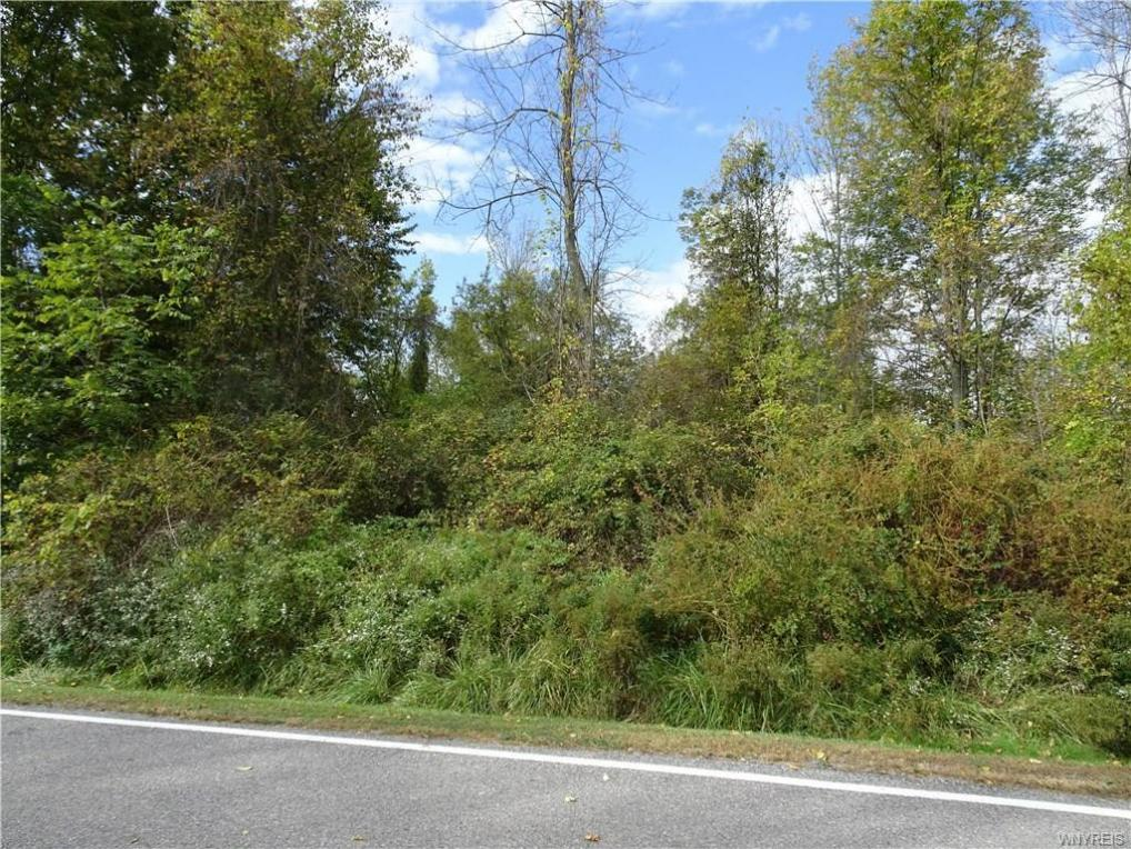 10650 Rapids Road, Clarence, NY 14032