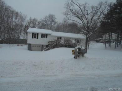 2098 Langford Road, North Collins, NY 14111