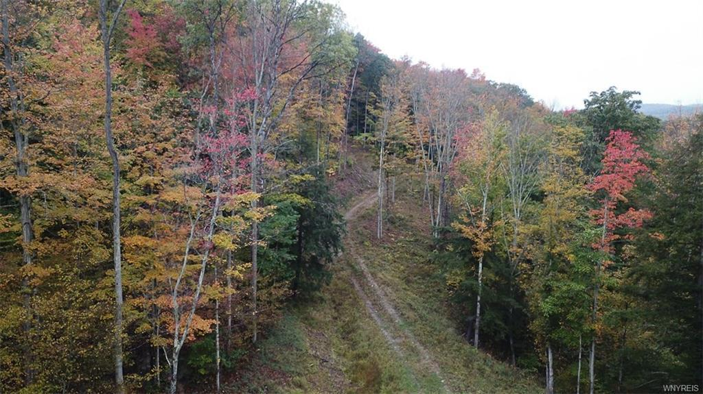 Lot #1 Slopeside Summit, Grove, NY 14884