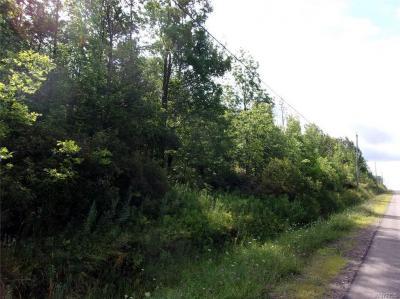 Photo of Lyonsburg Road, Eagle, NY 14024
