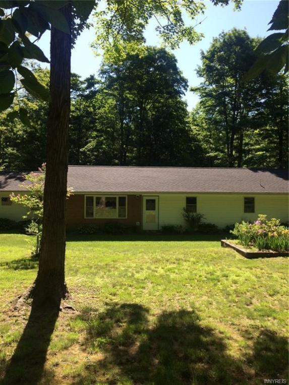 10188 Mink Hollow Road, Centerville, NY 14744