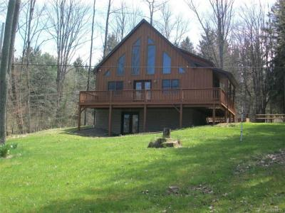 Photo of 8714 County Road 49 Road, Rushford, NY 14717