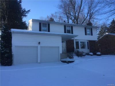 Photo of 45 Willow Wood Park South, Amherst, NY 14226