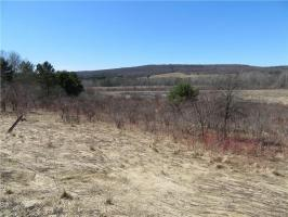 Route 242 Road, Machias, NY 14101