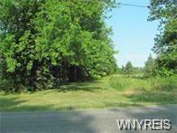 Vl Plank Road West, Cambria, NY 14094