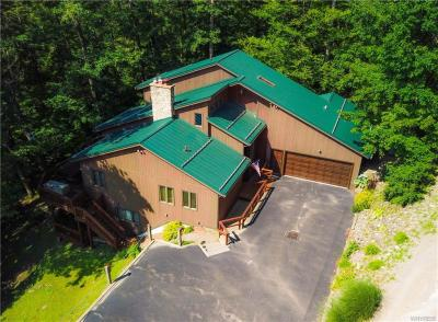 Photo of 6827 Holiday Valley Road, Ellicottville, NY 14731
