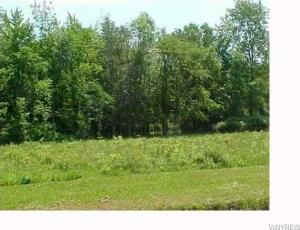 1970 Bush Road, Grand Island, NY 14072