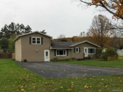 Photo of 100 Lakeview Drive Ext, Canadice, NY 14471