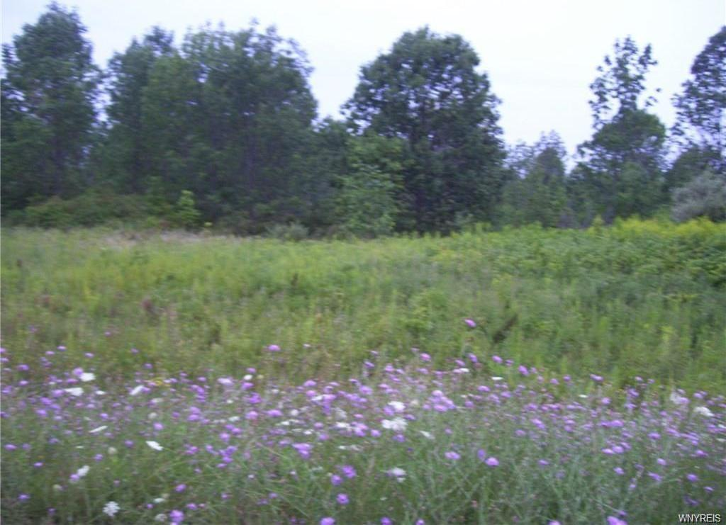 7 acres Moore Road, Concord, NY 14141