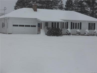 2731 Brown Street, Collins, NY 14034