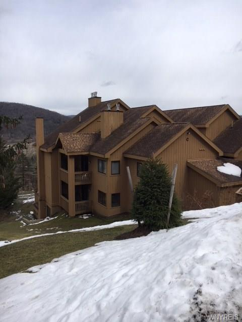 C 102 Snowpine Vlg, Ellicottville, NY 14731