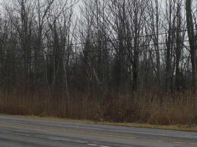 VL Erie Rd, Brant, NY 14027