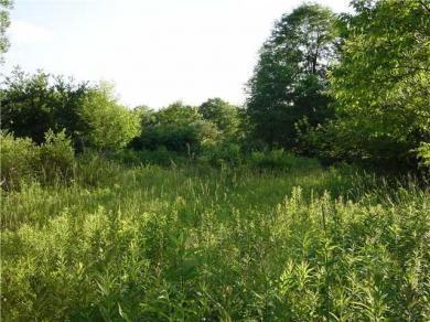 5 acres Hunters Creek Road, Wales, NY 14139