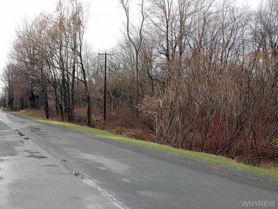 Photo of Route 31, Murray, NY 14470