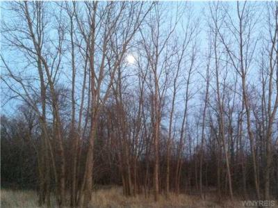 Photo of VL Rapids Rd North, Newstead, NY 14001