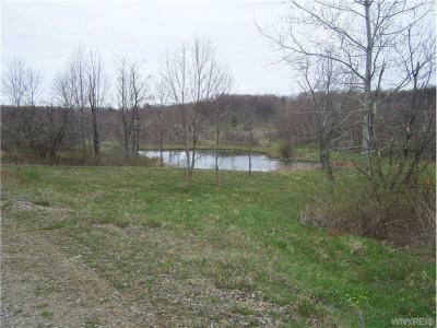 3 acres Crump Road, Colden, NY 14080