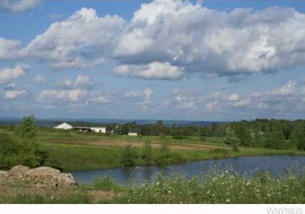 3 acres Phillips Road, Colden, NY 14080