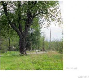 40 acres Rapids Rd, Clarence, NY 14032