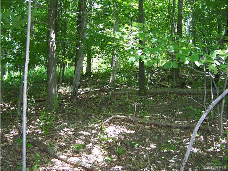 Wooded land for sale!