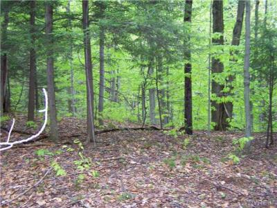 26 acres Bleistein Road, Colden, NY 14033