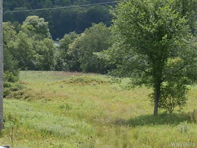 White Creek Road, Friendship, NY 14739