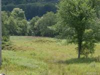 White Creek Road, Friendship, NY 14739