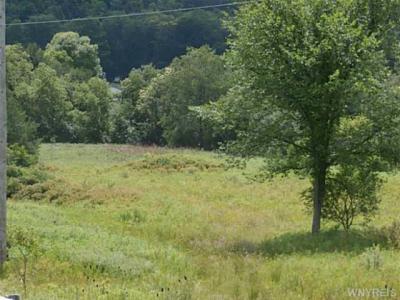 Photo of White Creek Road, Friendship, NY 14739