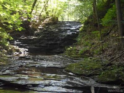 Photo of Jackson Falls Preserve, Aurora, NY 14052