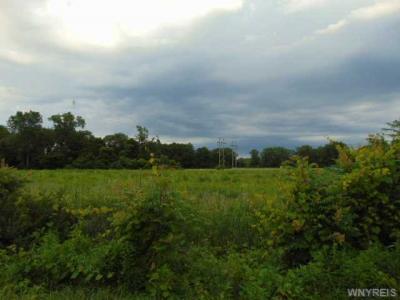 V/L Buffalo Rd East, Hanover, NY 14136