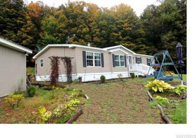10506 Mosher Hollow Rd, New Albion, NY 14719