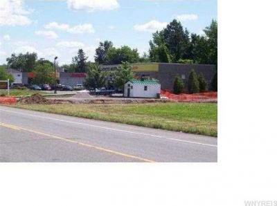 Photo of 11300 Maple Ridge Road, Shelby, NY 14103