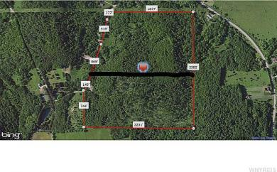 No # Youngs Rd - 53.5 Ac, Clarksville, NY 14727