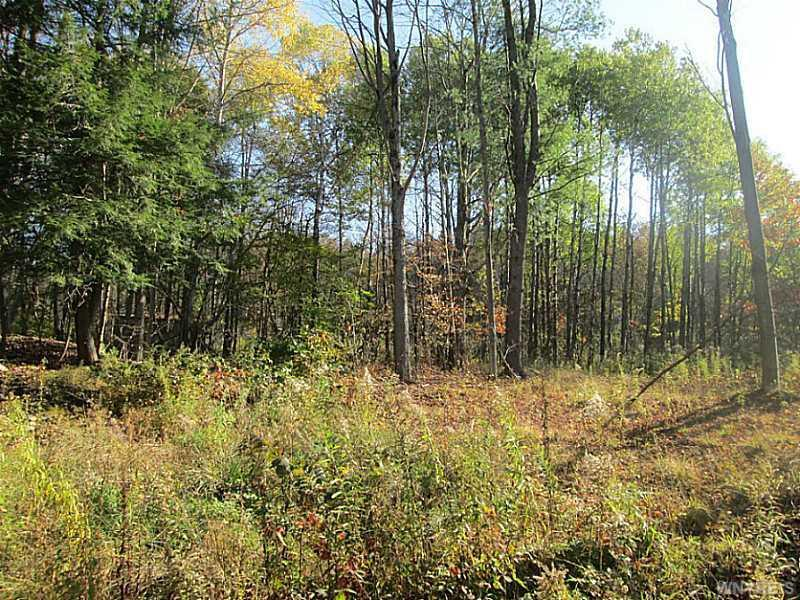 Lot 1 Witch Hollow Road, Ellicottville, NY 14731