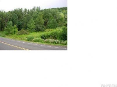 V/L Ellicottville-maples Rd, Mansfield, NY 14731