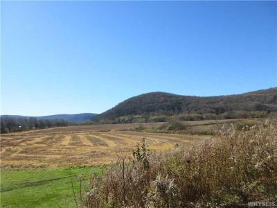 Photo of 00 Mutton Hollow Road, Great Valley, NY 14741