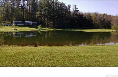 6909 Route 305, Belfast, NY 14711