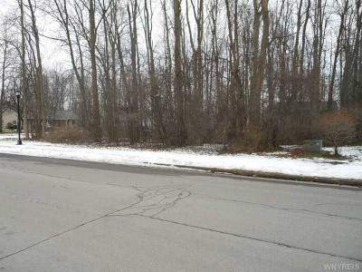 Photo of 137 Woodshire North, Amherst, NY 14068